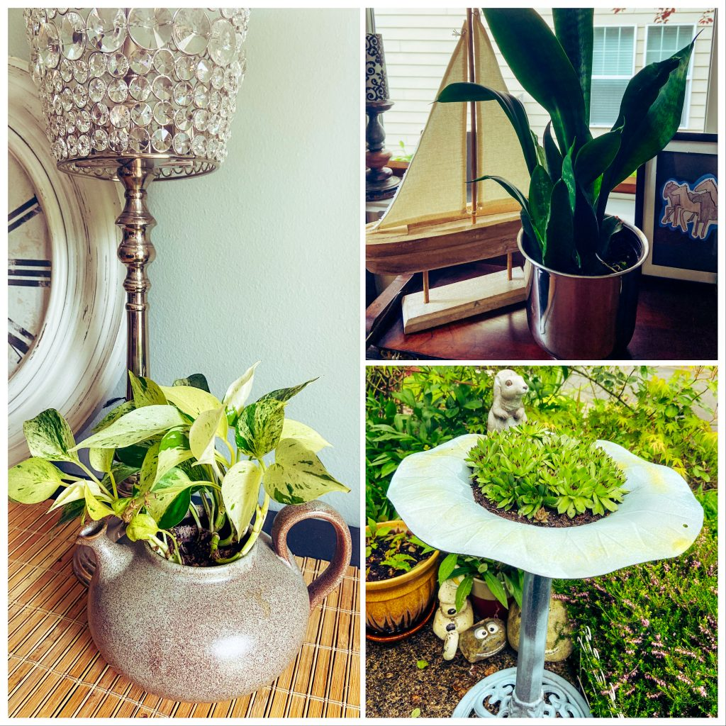 Three types of household items converted to planters.