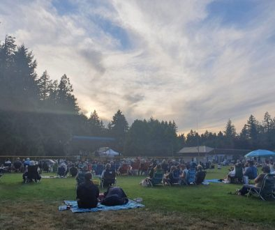 People sitting on grass watching concert.