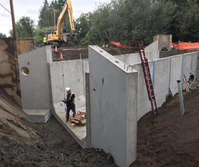 Fish passage construction.